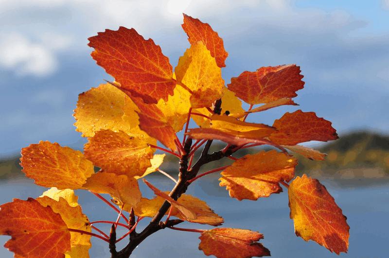 Flott start på høsten!